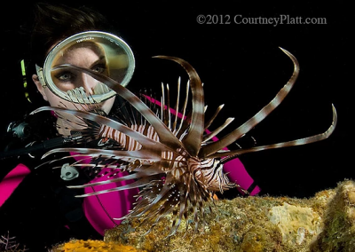 Stacy and the lionfish